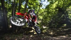 Beta Enduro 2016 - Immagine: 5