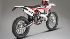 Beta Motorcycles RR 125 2T 2020, vista posteriore