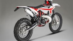 Beta Motorcycles RR 250 2T 2020, vista posteriore