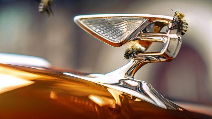 Beyond100: il logo Bentley