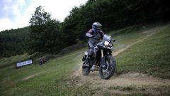 BMW completo Rallye3 - Immagine: 11