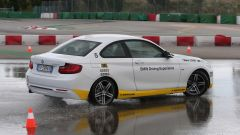 BMW Driving Experience - Immagine: 17