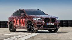 BMW X3 M e X4 M: le prime immagini ufficiali dei SUV sportivi - Immagine: 19