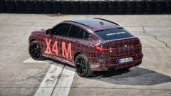 BMW X3 M e X4 M: le prime immagini ufficiali dei SUV sportivi - Immagine: 22