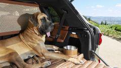 BMW X7 by Poldo Dog Couture: lo spazio dietro per i cani più grandi