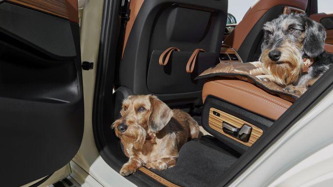 BMW X7 by Poldo Dog Couture: viaggio nel lusso per Poldo e Camilla