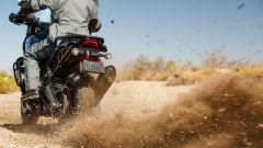 Brecciolino dalla posteriore della Harley-Davidson Pan America