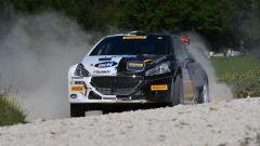 Campionato Italiano Rally, Peugeot in azione