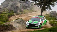 WRC 2016 – Rally del Portogallo - Immagine: 3