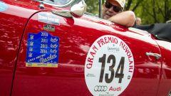 Cartoline dal Gran Premio Nuvolari 2014 - Immagine: 19