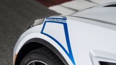 Chevrolet Corvette Carbon 65 Edition: i loghi dedicati