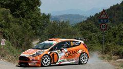 Rally Roma: il russo Lukyanuk davanti a tutti, quinto Andreucci con Peugeot - Immagine: 4