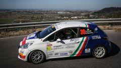 CIR, Andreucci soddisfatto dal ruolo di Coach per Peugeot - Immagine: 3