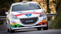 CIR, Andreucci soddisfatto dal ruolo di Coach per Peugeot - Immagine: 5