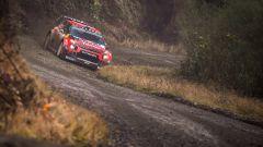 Citroen C3 Wrc Plus - Rally del Galles