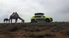 Citroen C4 Cactus: continua l'avventura gialla verso la Cina - Immagine: 11