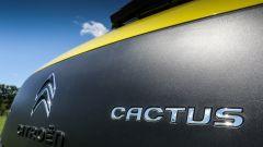 Citroën C4 Cactus: Airbump vs Bubble ball - Immagine: 21