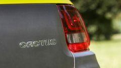 Citroën C4 Cactus: Airbump vs Bubble ball - Immagine: 36