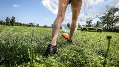 Citroën C4 Cactus: Airbump vs Bubble ball - Immagine: 177