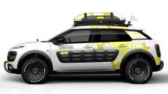 Citroën Cactus Adventure  - Immagine: 3