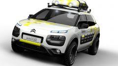 Citroën Cactus Adventure  - Immagine: 4