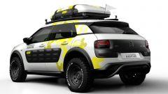 Citroën Cactus Adventure  - Immagine: 2