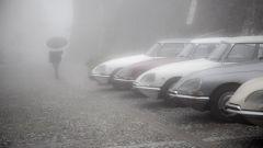 Citroën DS 60 anni dopo: le foto del raduno - Immagine: 4