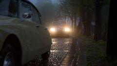Citroën DS 60 anni dopo: le foto del raduno - Immagine: 10