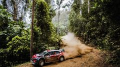 Rally Australia: Citroen fatica nello Shakedown, ma la pioggia...