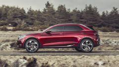 Citroën Wild Rubis - Immagine: 27