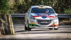 Ciuffi e Gonella - Peugeot 208 R2b