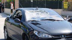 Condannato a un anno l'investitore di Nicky Hayden - Immagine: 7