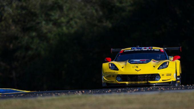 corvette C7 Petit Le Mans