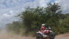 Coma e Al Attyah vincono la Dakar 2011 - Immagine: 92