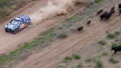 Coma e Al Attyah vincono la Dakar 2011 - Immagine: 85