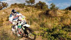 Coma e Al Attyah vincono la Dakar 2011 - Immagine: 68
