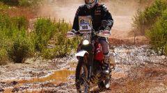 Coma e Al Attyah vincono la Dakar 2011 - Immagine: 49