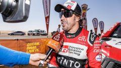 Alonso pensa ancora al ritorno in F1