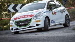 Peugeot Competion cerca pilota ufficiale 2019 per il trofeo monomarca
