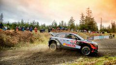 WRC 2019 Rally di Gran Bretagna, info e risultati
