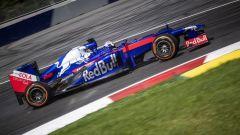 Daniel Pedrosa al volante della Toro Rosso