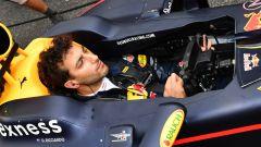 Daniel Ricciardo - Red Bull 2016