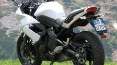 Demo Ride Kawasaki al CIV a Monza - Immagine: 6