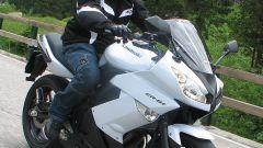 Demo Ride Kawasaki al CIV a Monza - Immagine: 4