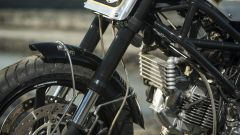 Ducati Monster Tracker - Immagine: 11
