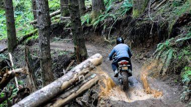 Ducati 1199 TerraCorsa: in offroad se la cava, ma niente esagerazioni