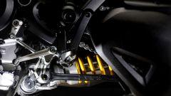 Ducati Diavel a quota 5.000 - Immagine: 19
