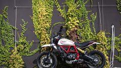 Ducati: le nuove Scrambler a Intermot 2018. Ecco come cambiano - Immagine: 5