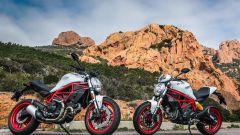Ducati Monster 797 e 797 Plus, con cupolino e unghia monoposto