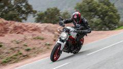 Ducati Monster 797: prova, caratteristiche, prezzo [VIDEO] - Immagine: 7